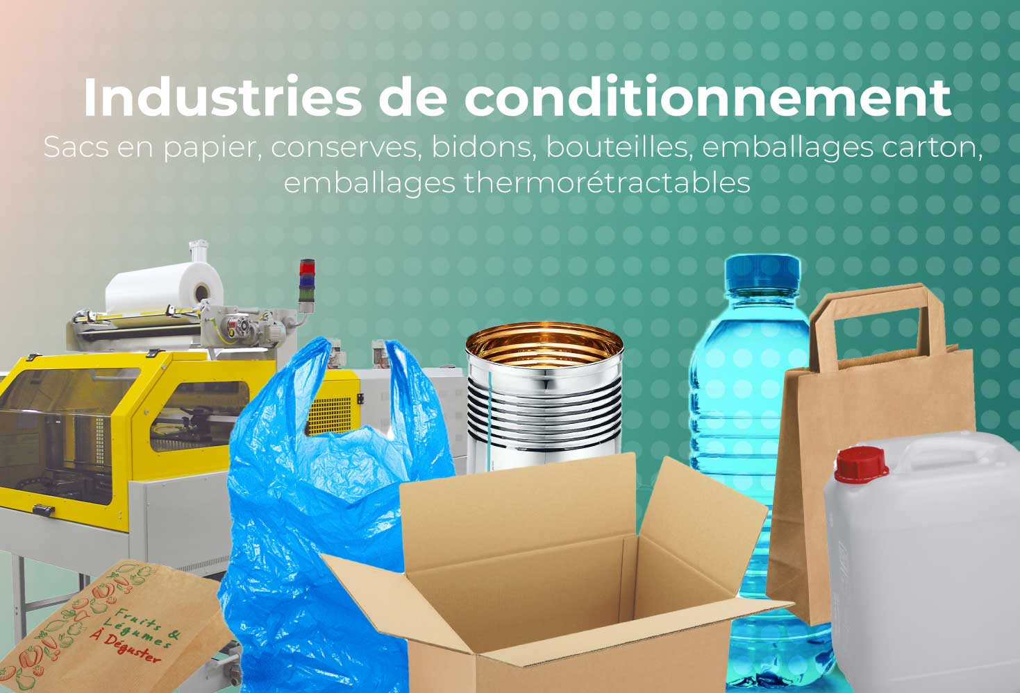 Usine de conditionnement