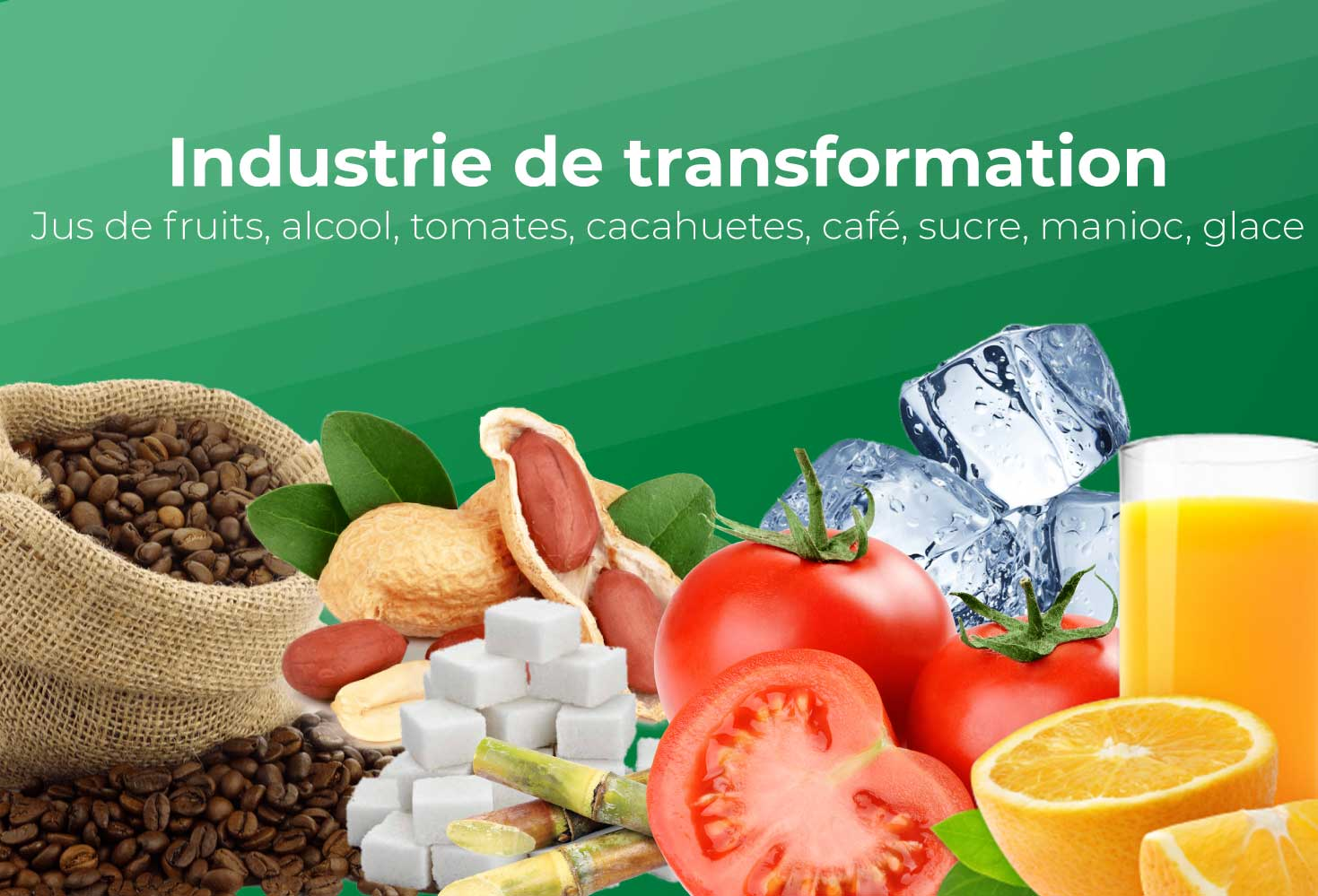 Industries de transformation
